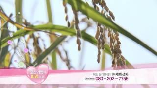 """MIGANG 가정용 현미 도정기 홈앤쇼핑 """"중…"""