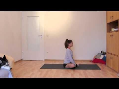 yoga for back pain  youtube