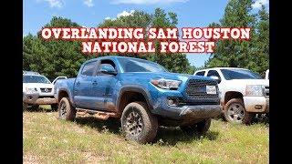 Exploring Sam Houston National Forest