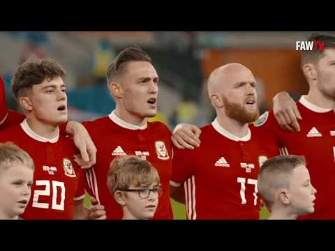 WALES' EUROPEAN CAMPAIGN. THE STORY SO FAR...