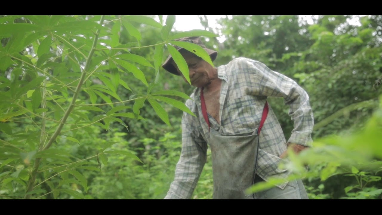 """""""Los Recuerdos"""" /// Short Film /// Colombia - Español"""
