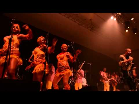 Watch Femi Kuti Perform At The 2Kings Concert - Pulse TV Exclusive