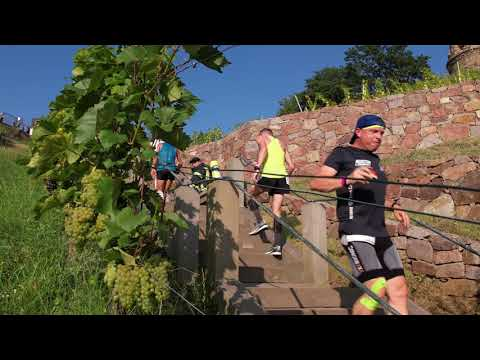 Treppenmarathon MT. EVEREST Radebeul 2021
