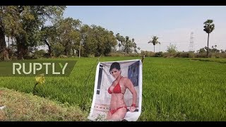 Boob job! Indian porn star poster wards off 'evil eye,' boosting local harvest