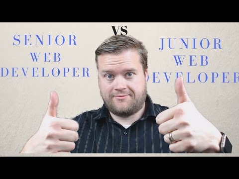 Senior Programmers vs Junior Programmers and Q&A