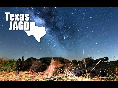 Wheat Vandals In Texas - Wild Pig Hunting With Thermal Scopes