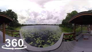 Waterford Landing Orlando video tour cover
