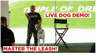 Watch This to Master the Leash! (Live Dog Demonstration)
