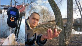 Рыбалка на Кубани Ловля карася плотвы Рыбалка в марте Ловля карася перед нерестом