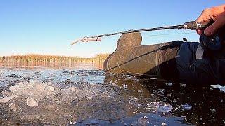 В ПОИСКАХ ПЕРСПЕКТИВНЫХ КОРЯГ СЮРПРИЗ ОТ ТАНИ Первый лед 2020 2021 Зимняя рыбалка 2020 2021