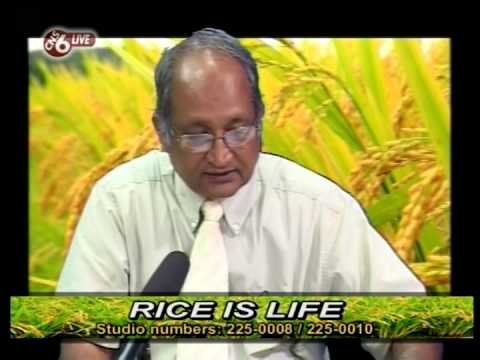 Guyana Rice Producers say It's Time For CHANGE Pt 2.
