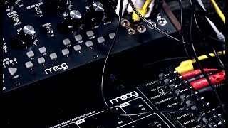 Modular Synthesis with Moog Mother-32 and Werkstatt-01