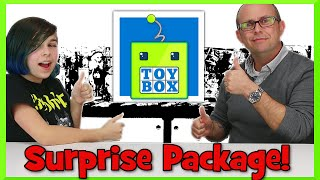 Surprise Package Unboxing From Toy Box Collectibles - Tokidoki, Grumpy Cat, Blind Bags And More!