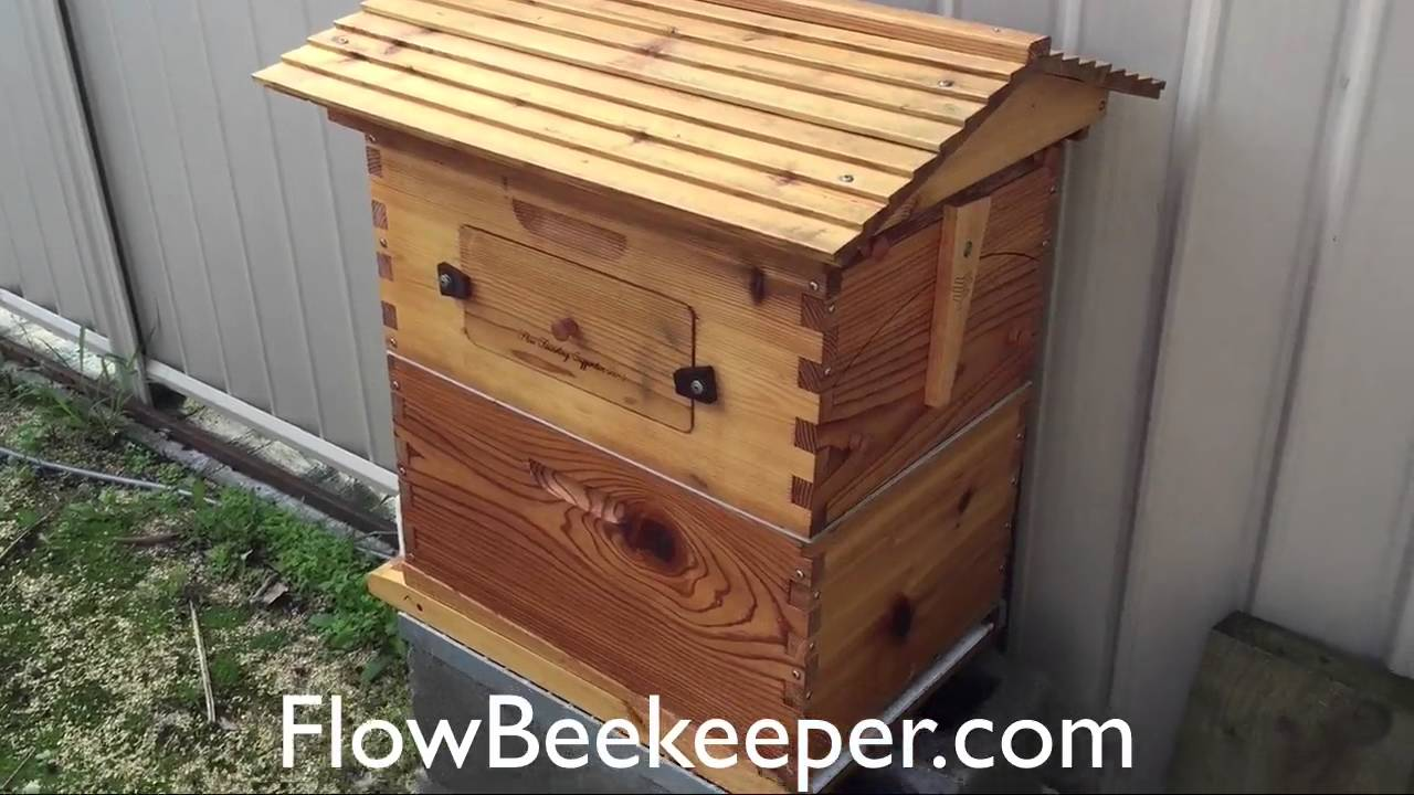 How Much Tung Oil Should I Use on the Flow Hive