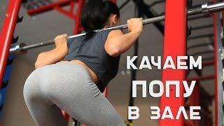 Как накачать попу. Тренировка в зале. [Workout | Будь в форме](Хотите попу как орех? Выполняйте нашу программу из 5 базовых упражнений. О том, как правильно выбрать вес..., 2015-10-05T06:50:18.000Z)