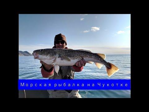 Морская рыбалка на Чукотке
