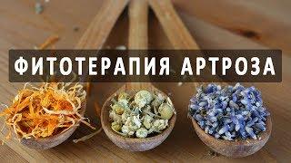 Фитотерапия (лечение травами) артроза. Эффективные рецепты от артроза