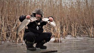 ЭКСТРЕМАЛЬНОЕ Путешествие в Дельту Волги Трудовая Рыбалка. Лучший рецепт КАРАСЯНДРИКА Рыба ЕСТЬ