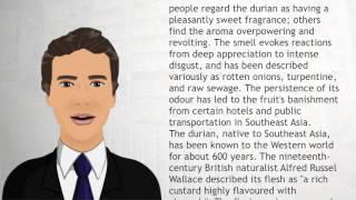 Durian - Wiki Videos