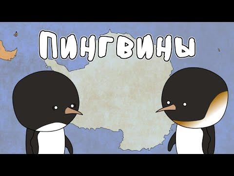 Пингвины - Мудреныч
