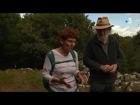 Les Rencontres préhistoriques nous renseignent sur les premiers hommes en Bretagne - - France 3 Bretagne