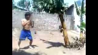 Боец Муай Тай ломает дерево