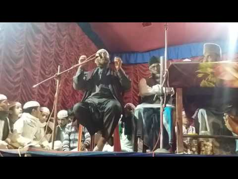 Jalsa Hazrat Ali ka jiboni