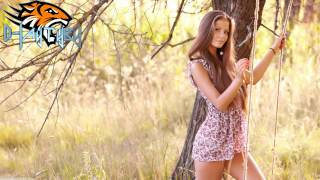 Romanian Top Hits Music Mix ★November 2013★Vol.1 HD [Mixed by D'Jay Tyby]