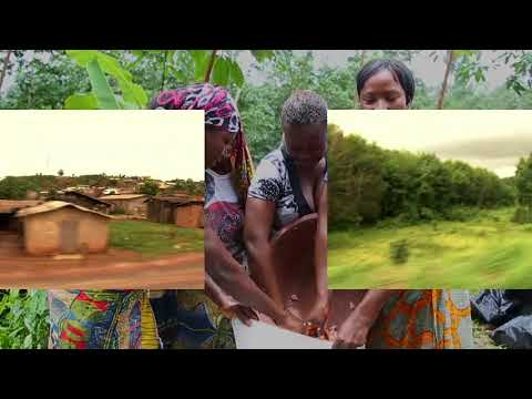 Discover CÉMOI's Transparence Cacao program