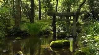 大寧軒 ・南禅寺 京都の庭園 Dainei-ken Nanzen-ji The Garden of Kyoto Japan FullHD