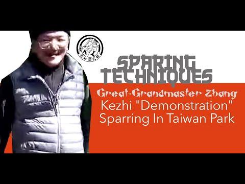 "Great-Grandmaster Zhang, Kezhi ""Demonstration"" Sparring In Taiwan Park"