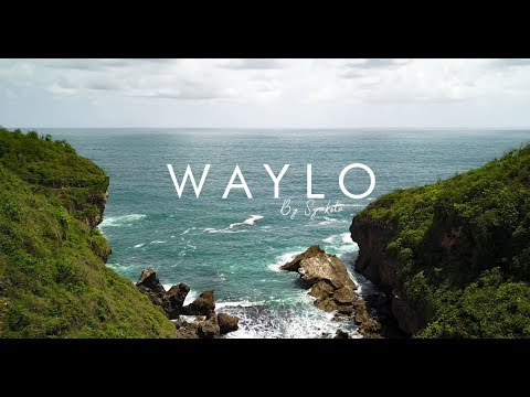 WAYLO - Cover By Nida Zahwa [Syakila Official]