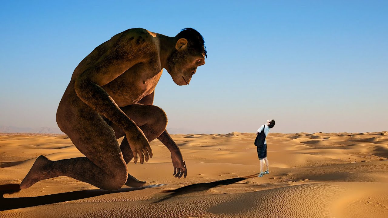 ¿Qué Pasaría Si Conocieras A Todos Tus Antepasados De Hace 385 Millones De Años?