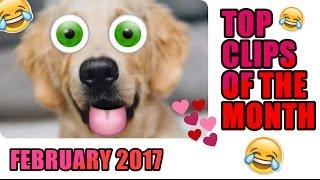 Best Clips Of The Month   February 2017