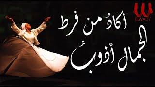 Akad Mn (With lyrics) | اكاد من فرط الجمال اذوب الأصليه بالكلمات