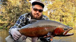 Winter fishing in New Zealand on the FLY so good