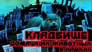 Кладбище домашних животных в Химках