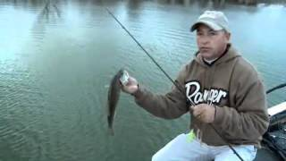 Clark Wendlandt and Wade Middleton Talk About Confidence In Bass Fishing
