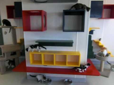 Lafayette Veterinary Care Center | Gallery