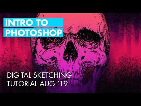 Intro To Photoshop Skull Sketching Tutorial