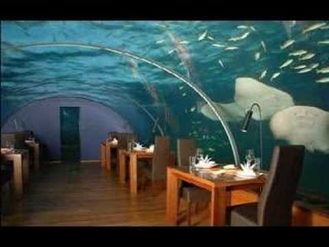 Under sea restaurant worlds first all glass maldives for Los mejores hoteles boutique del mundo