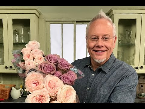 Care & Handling, Using Alexandra Farms Garden Roses For Everyday Designs with J Schwanke