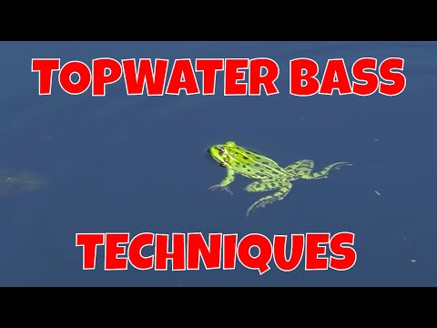 TOPWATER BASS TECHNIQUES | Hawk Lake Lodge
