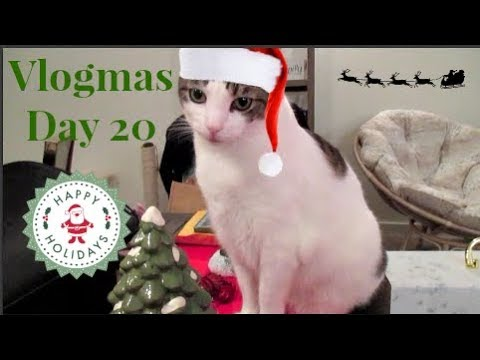 MORE Early Gifts + Paw Ornaments | Vlogmas Day 20