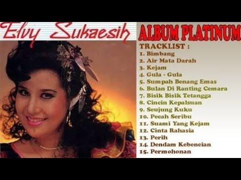 Terbaik Dari Elvy Sukaesih | Full Dangdut | Playlist | Best Audio !!!