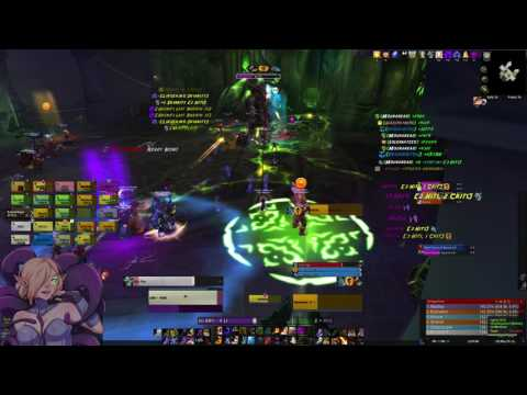 Disambiguation - Heroic Tichondrius - Nighthold