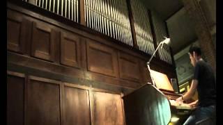 """Breve improvvisazione organistica sull'organo Carlo II Vegezzi Bossi della chiesa di San Giovanni Bosco in Torino sulla sigla del cartone animato """"Il tulipano ..."""