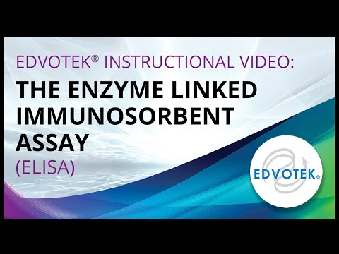 The Enzyme Linked Immunosorbent Assay (ELISA)
