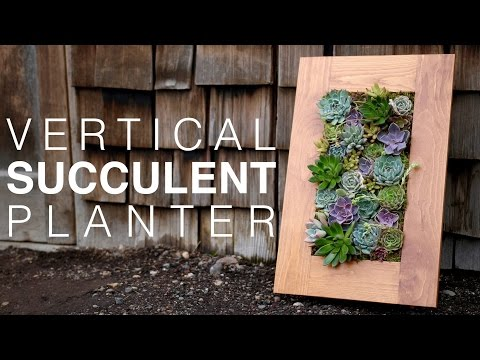 grovert-living-wall-planter-with-succulents