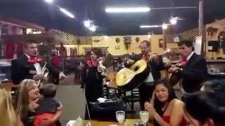 mariachi los guapos houston tx contrataciones 713 922 5271